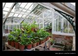 Sunnycroft Victorian Villa #23