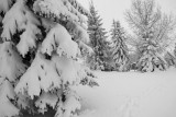 April 5-Snow Day