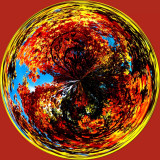 Autumn Circle