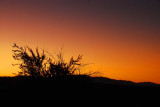 Sunrise Sillouettes in Death Valley