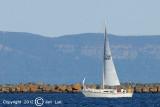Sailing 009