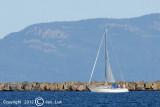 Sailing 010