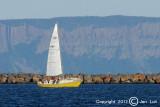 Sailing 015