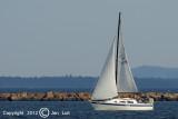Sailing 018