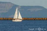 Sailing 032