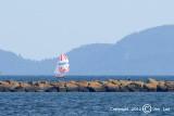 Sailing 035
