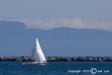 Sailing 036