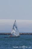 Sailing 038