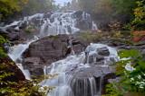 LaULT_zwPB_ASC1356pp_Picture_in_deep_forest_Tableau_en_foret_Lan.jpg
