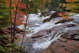 PB_ASC1952_Underwood_and_waterfall_Cascades_en_foret_Lan.jpg