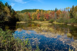 PB_ASC2223_Water_reflection:Miroir_d'automne_Mauricie_Quebec.jpg
