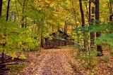 PB_ASC3143_A_trail_to_the_sugar-house_Ste-Anne-des-Plaines_Laurentians_Quebec.jpg