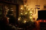Christmas. Dad and the Xmas tree.