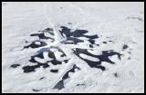Pattern on Ice