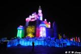 Harbin Ice and Snow World DSC_7682
