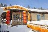 Shuangfeng Forest DSC_8375