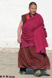 Labrang Monastery DSC_1054