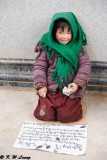 Little beggar DSC_2534