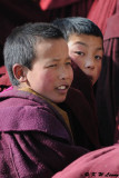 Labrang Monastery DSC_1059