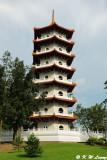 Chinese Garden DSC_8654