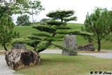 Japanese Garden DSC_8687