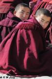 Labrang Monastery DSC_1122