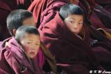 Labrang Monastery DSC_1083