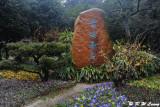 Plum Garden DSC_1836
