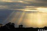 Rays of light DSC_3753