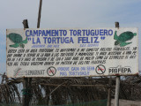 This turtle sanctuary protects endangered species