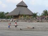 Kids play along the beach