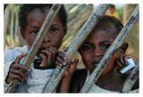 Madagascar - L'île rouge 20