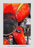 Bike 46