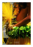 Paris Tropical Carnival 2011 - 3