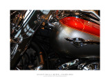 Salon de la Moto et du Scooter - Paris 2011 - 5