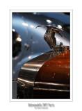 Retromobile 2012 - 5