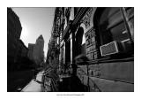 New York 73