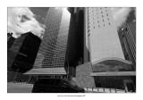 New York 85