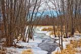 Winter Brook 20110218