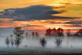 Misty Sunrise 09904