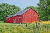 Red Barns 20110708