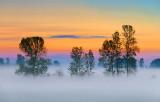 Sunrise Mist 20110801