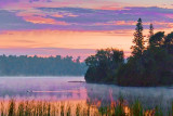 Gull River At Sunrise 14304