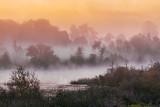 Misty Rideau Canal Sunrise 20110905