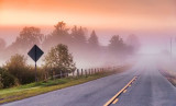 Foggy Road At Dawn 20110907