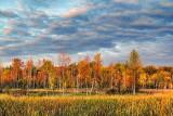 Autumn Landscape 20110923