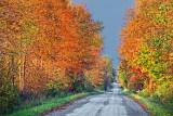 Autumn Back Road 20110927