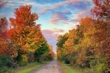 Autumn Back Road At Sunrise 16995