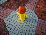 Hydrant 20111117