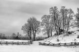 Snowscape 20120107